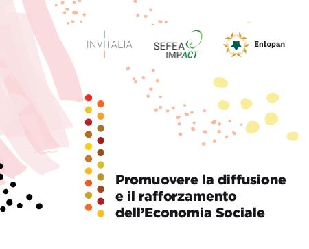 promuovere la diffusione e il rafforzamento delleconomia sociale
